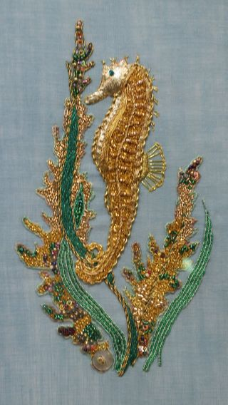 Seahorse by Diane Stoker